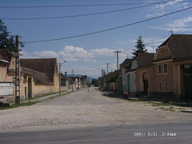 Tartlau 2001