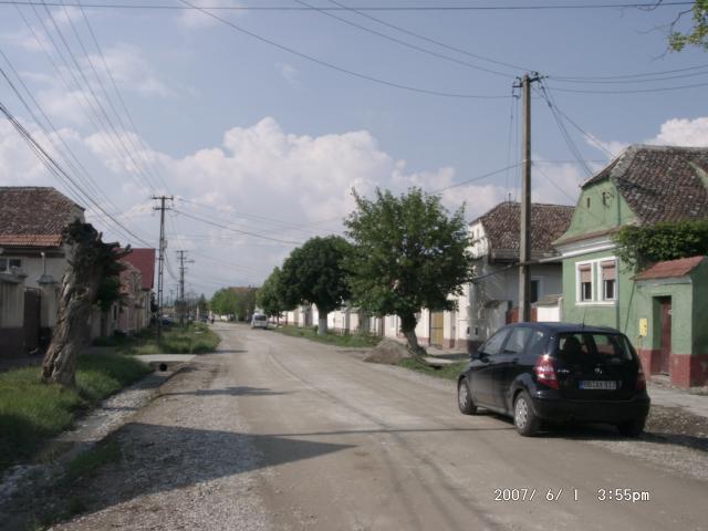 Tartlau 2007